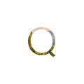 Quest - Web Browser
